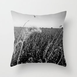 Cornfield Number 1 Throw Pillow