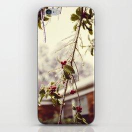 Glaze #3 iPhone Skin