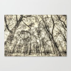 The Forest Of Sepia Canvas Print