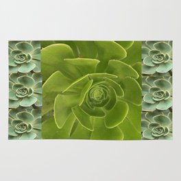 COLLAGE GRAY-GREEN  SUCCULENTS  MODERN DESIGN Rug