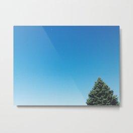 Timid Tree Metal Print