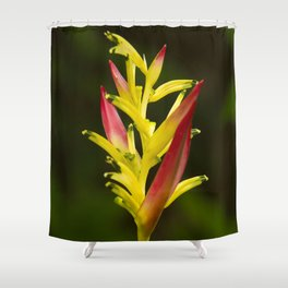 Colorful and Vibrant Hawaiian Tropical Wildflower Shower Curtain