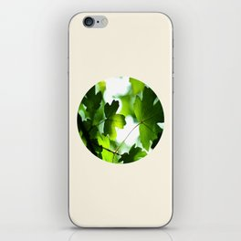 Green Baby Maple Leaves Round Photo iPhone Skin