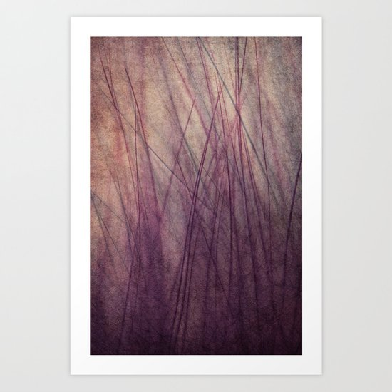 Feathered II Art Print