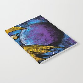 Space Ghost 3.0 Notebook