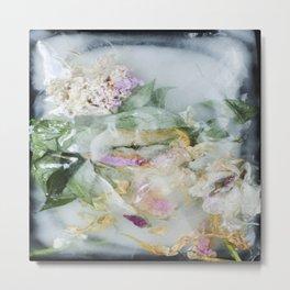 Ice flowers 7 Metal Print