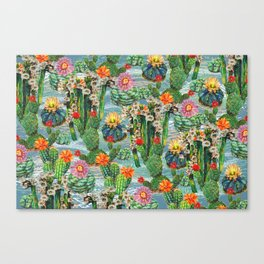 Cactus Desert - BBG Canvas Print