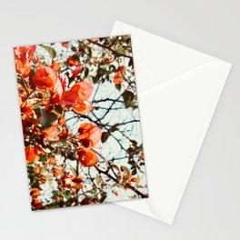 Orange Bougainvillea Stationery Cards