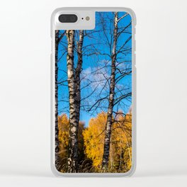 4 birches Clear iPhone Case