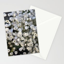 Valentine's Day Roses 19 Stationery Cards