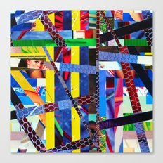 Bruce (stripes 13) Canvas Print