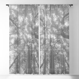 Smoky Mountain Summer Forest X - National Park Nature Photography Sheer Curtain