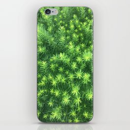 Nature for Days iPhone Skin