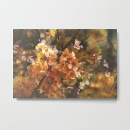 Double Exposed Blossom 2 Metal Print