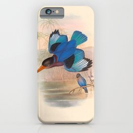 Halcyon Omnicolor Kingfisher Vintage Birds Of Asia iPhone Case