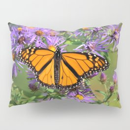 Monarch Butterfly on Wild Aster Flower Pillow Sham