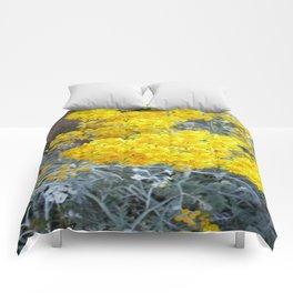 Yarrow. Comforters