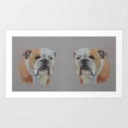 English Bulldog Dog portrait Pastel drawing Cute pets on gray background Art Print