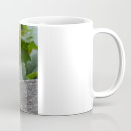 A Female American Redstart Coffee Mug