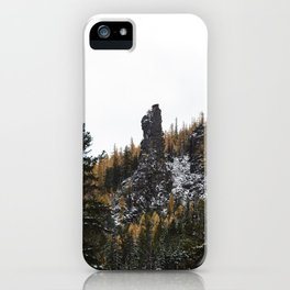 Larches in Snow pt. 2 iPhone Case