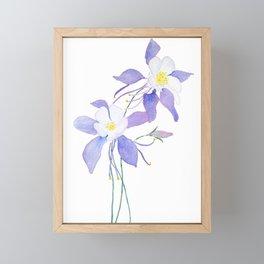 purple columbine flower Framed Mini Art Print