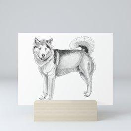 Alaskan malamute Mini Art Print