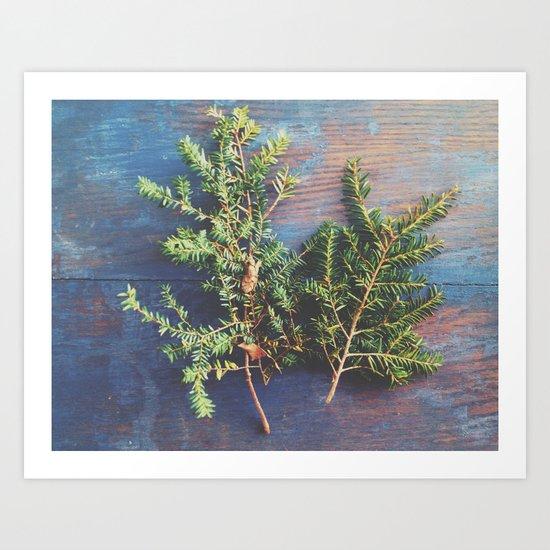 Hemlock on Blue Table Art Print