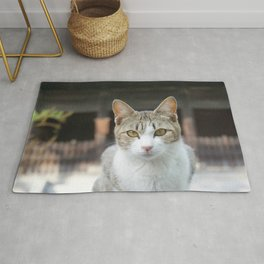 This Roaming Cat Japa Rug