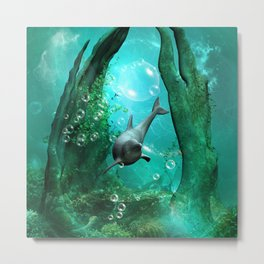 Swimming dolphin Metal Print