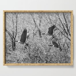 Canada Geese in Black & White Serving Tray
