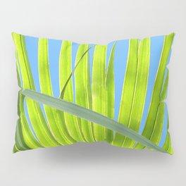 Saw Palmetto Pillow Sham