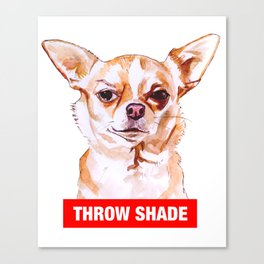 Throw Shade by BNVDO Canvas Print