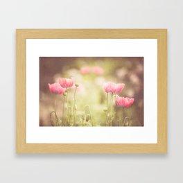 Pink Poppy Framed Art Print