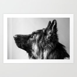 Pepe The Dog Art Print
