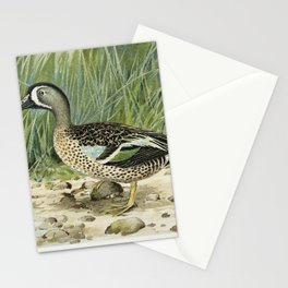 Blue-Winged Teal (Anas Discors Linn) illustrated by JL Ridgway (1859-1947) and WB Gillette (1864-193 Stationery Cards