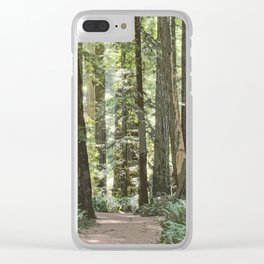 SUNNY REDWOOD TRAIL IN THE STOUT GROVE Clear iPhone Case