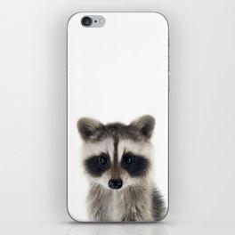 Baby Racoon iPhone Skin
