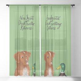 Nova Scotia Duck Trolling Retriever (Green) Sheer Curtain