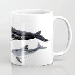 Rough-toothed dolphin (Steno bredanensis) Coffee Mug