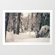 Winter Woods 2 Art Print