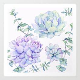 Wonderful Succulents 2 Art Print