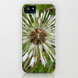 Dandelion In The Rain iPhone Case