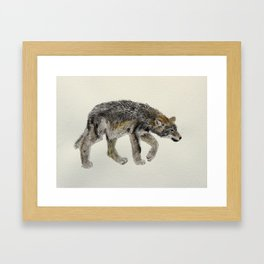 Wolf cub - Louveteau - Lobezno - Lobacho Framed Art Print