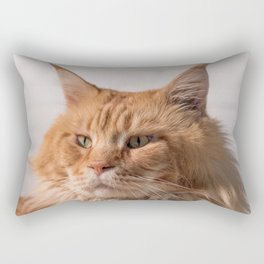 Purebred red Maine Coon cat lying on the floor at home Rectangular Pillow