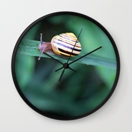 Snail in His Green Jungle Wall Clock