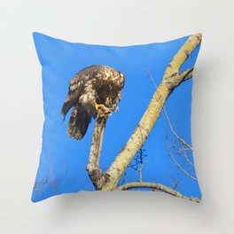 Houdini in Feathers! Throw Pillow