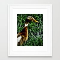 duck Framed Art Prints featuring Duck by Phil Flaig