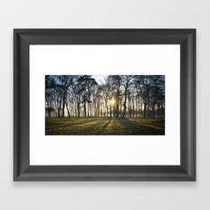 The Long Shadows Framed Art Print