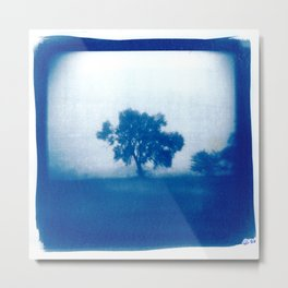 Tree in Field of Fog Cyanotype Metal Print