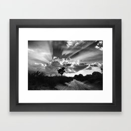 Joshua Tree, Illuminated. Framed Art Print